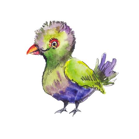 sketch: Sketch of tropic bird. Funny  sketch.