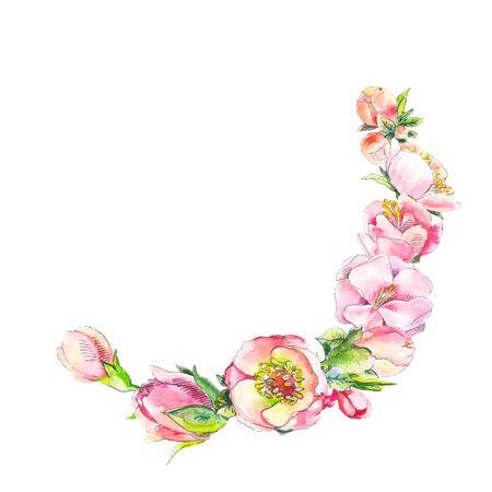 elemento de color rosa de la acuarela constan de flores de color rosa. elemento de la vendimia. flores de peonía aisladas.