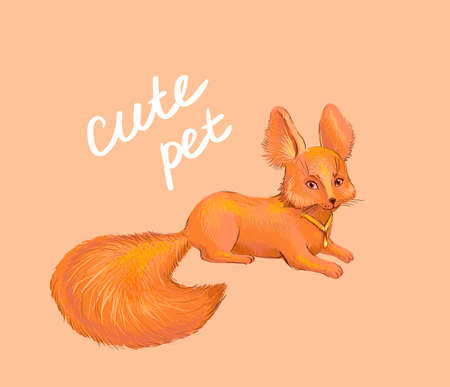 cute: Cute fox Illustration