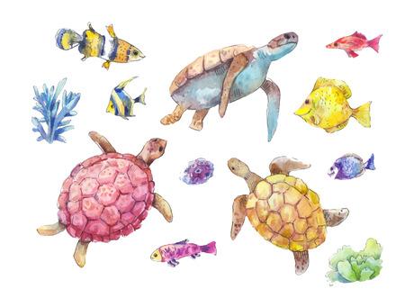Reeks zeeschildpadden, mariene die vissen en algen in waterverf worden geschilderd, op witte achtergrond wordt geïsoleerd. Handgetekende vectorillustratie.