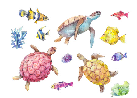 Set of sea turtles, marine fish and algae painted in watercolor, isolated on white background. Hand-drawn vector illustration. Vettoriali