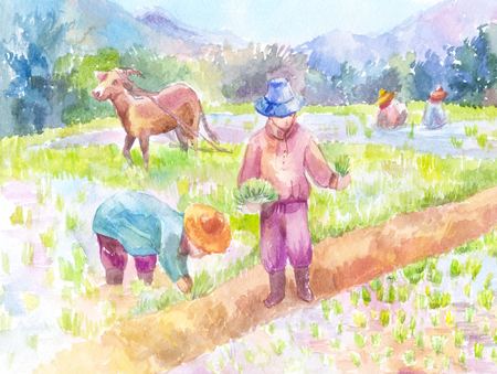 People planting rice in a paddy field. Watercolor painting, hand-drawn illustration. Asia, Thailand.