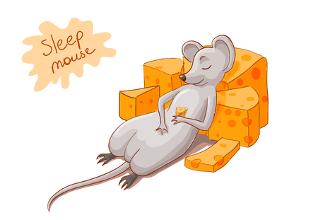 mouse with cheese  sleeping, vector illustration Illustration
