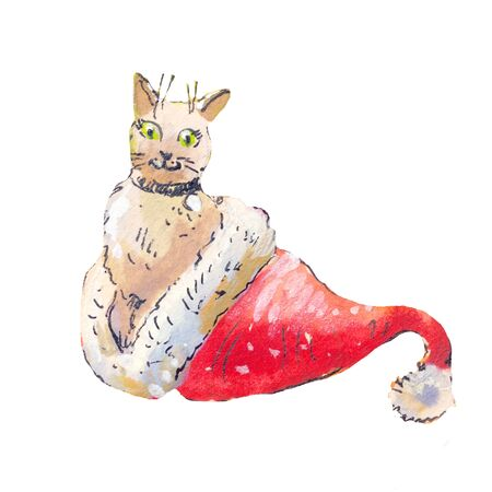 Cat in a Santa Claus hat. Watercolor illustraton isolated on white, cute pet
