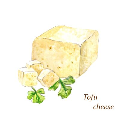 Watercolor tofu cheese. Cliced ??product for miso soup, salad, etc. Stock Photo