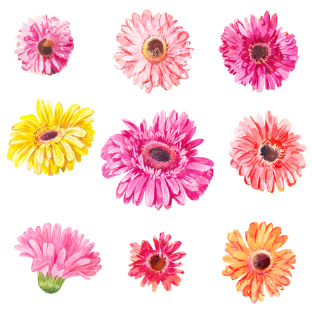 Set of pink and yellow gerberas heads isolated on white. Watercolor flowers Stock Photo