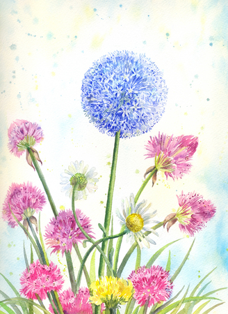 suitable: Bouquet of wildflowers with watercolor. Summer floral illustration suitable for decoration of kitchen, as poster or wallpaper. Stock Photo