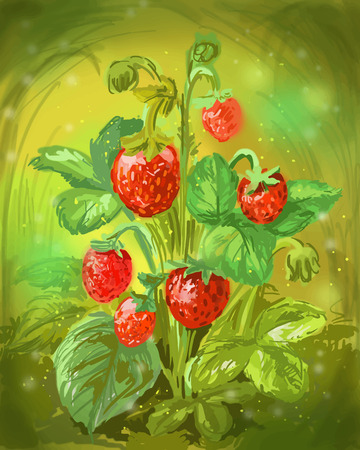 Wild strawberry vector illustration. Bush of red ripe berries in a forest clearing Illustration