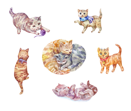 Set of watercolor kittens. Cute pets isolated on white.