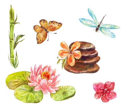 Set of feng shui symbols. Watercolor illustrations of lotus, massage stones, bamboo, orchid, butterfly and dragonfly isolated on white Banque d'images - 102982001