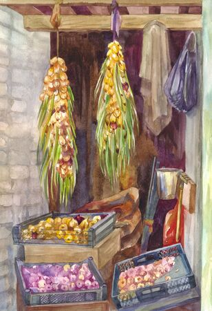 Braids of onions drying in pantry. Watercolor painting. Illustration, vintage background for the autumn harvest festival Stok Fotoğraf