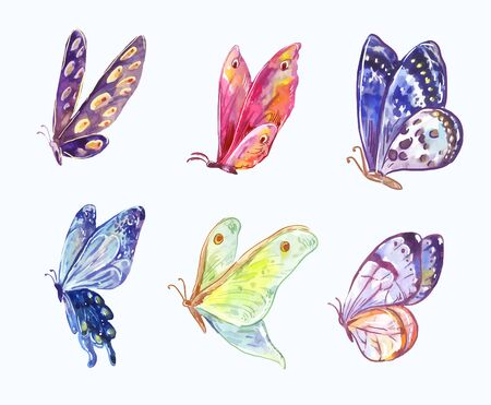 Wings of bright butterflies in watercolor sketch style