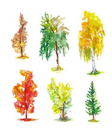 Ensemble d'arbres d'automne de vecteur. Croquis aquarelles isolés. Peinture chaude et lumineuse. Illustration de bouleau, peuplier, pin, érable, tremble, etc. Vecteurs