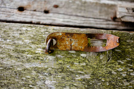 Rusty hasp on wooden boards of an old barn covered with moss Stock Photo