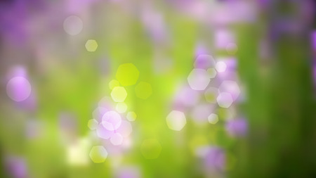 french countryside: Lavender field background bokeh blur vector