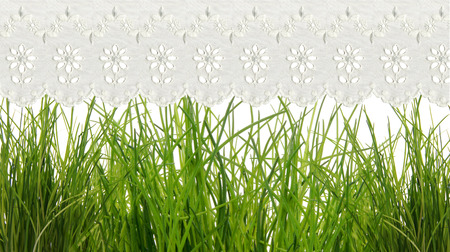 grass background: chive with embroidered curtains