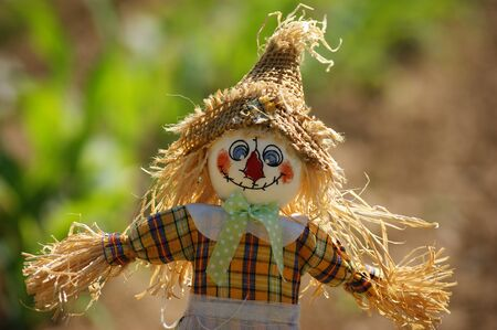 scarecrow dressed in colorful clothes rag on a green background maize Stock Photo