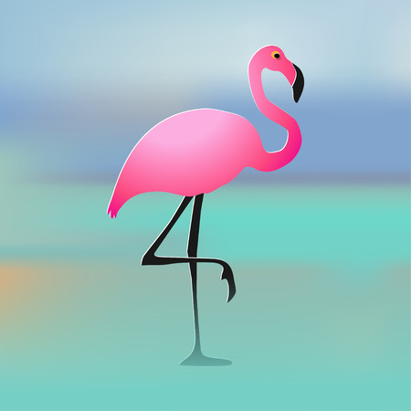 Flamingo pink on the beach multicolor background. Illustration