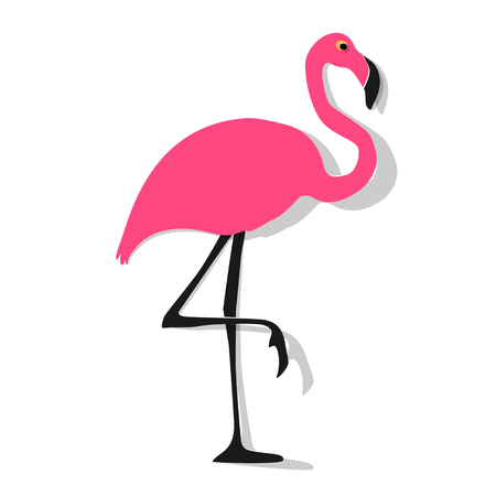 Flamingo pink on a white background.