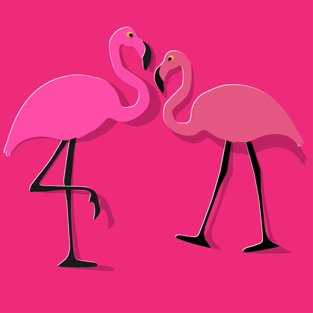 Two flamingos couple on a pink background.