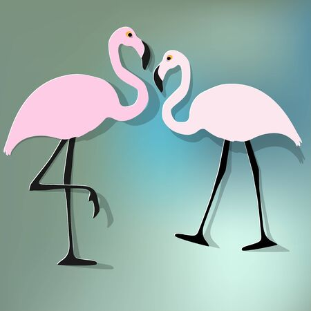 Two flamingos couple on a blue bokeh background.