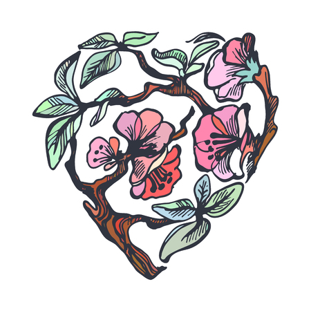 apple blossom: Apple blossom heart. Hand draw doodle vector illustration.