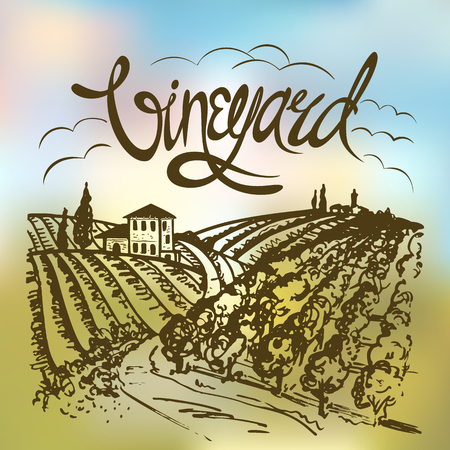 gradient mesh: vineyard landscape. Vintage illustration. Backdrop created with gradient mesh.