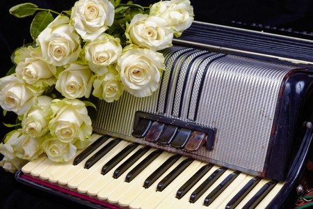 acordeon: Vintage accordion and a bouquet of white roses. Concept of a nostalgic music. Still life with a traditional folk musical instrument.