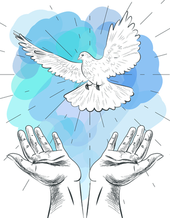 Sketch of hands let go dove of the world. Symbol of peace. Illustration of freedom and world without war.