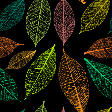 details: Seamless pattern with skeleton leaves. Autumn background. Vector illustration
