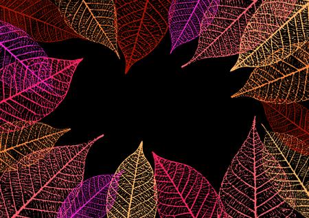 details: Backdrop with skeleton leaves. Autumn background. Vector illustration