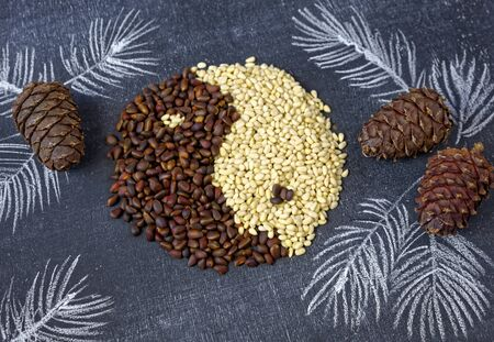 Close up pf cedar pine nuts and cones in the form of yin and yang on blackboard background Stock Photo
