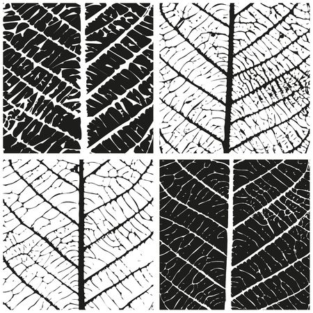 Set of patterns with skeleton leaves. Natural background. Vector illustration Vectores