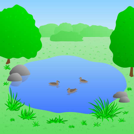lake: Beautiful lake with ducks, summer landscape, vector illustration