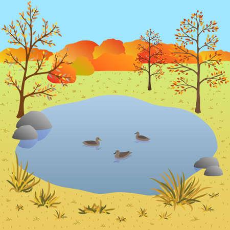 Flate autumn landscape, lake with ducks. Art vector illustration for you design Illusztráció