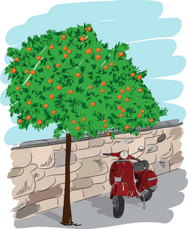 Scooter near an orange tree on a background of a stone wall. Hand drawn sketch. Art vector illustration for your design