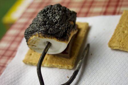 Burnt Smore at Picnic