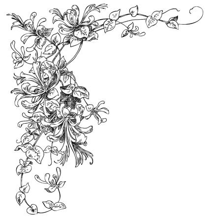 Floral corner ornament. Hand drawn engraving illustration. Vettoriali