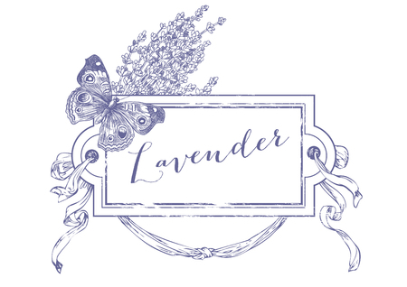 Hand drawn pen and ink lavender illustration. Illustration