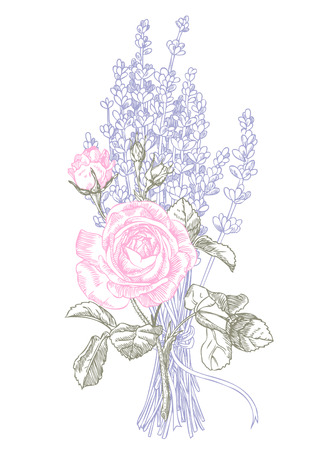 Hand drawn pen and ink lavender and roses illustration. Banque d'images - 109873407