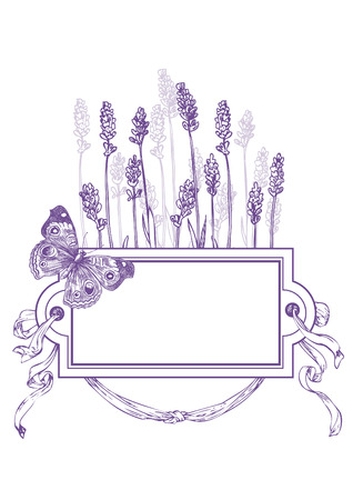 Hand drawn pen and ink lavender, frame, ribbon and butterfly illustration.