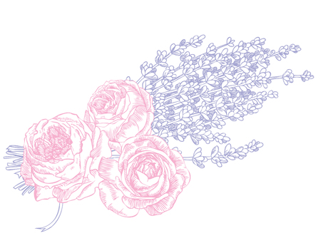 Hand drawn pen and ink lavender and roses illustration. Banque d'images - 109873411