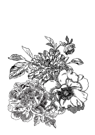 Hand drawn engraving Dahlia and Peonies bouquet illustration.