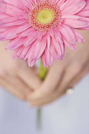 woman holding pink flower photo