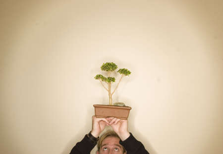 Bonsai is being held up in the middle of a tan background by man in black jacket with blue eyes and blond hair Stock Photo - 807728