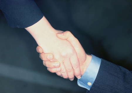 two persons only: Businessman and businesswoman give a handshake to seal the deal