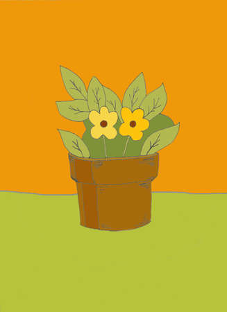single potted flower plant with orange background