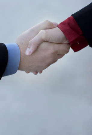 A businessman and a businesswoman give a handshake to seal the deal Stock Photo - 2690585