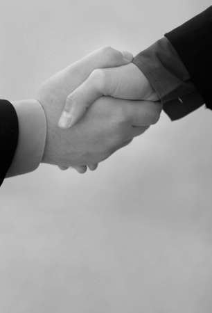 A businessman and a businesswoman give a handshake to seal the deal Stock Photo - 2703153