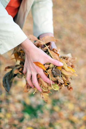 woman holding a bunch of leaves outside in the autumn with fallen leaves